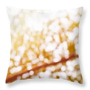 Beneath A Tree 14 5286 Triptych Set 3 Of 3 Throw Pillow by Ulrich Schade