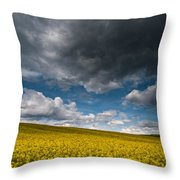 Beneath The Gloomy Sky Throw Pillow