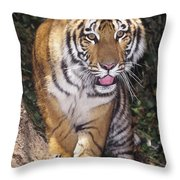 Bengal Tiger By Tree Endangered Species Wildlife Rescue Throw Pillow