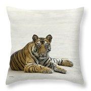 Bengal Tiger Cub On Road Bandhavgarh Np Throw Pillow