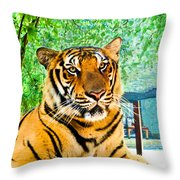Bengal Tiger Thailand Throw Pillow