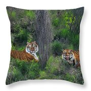Bengal Tigers On Grassy Hillside Endangered Species Wildlife Rescue Throw Pillow