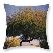 Bent But Not Broken Throw Pillow by Laurie Search