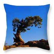 Bent By The Wind Throw Pillow