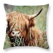 Bent Horn Long Horn Throw Pillow