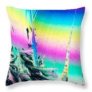 Benzoic Acid Microcrystals Coloful Abstract Art Throw Pillow