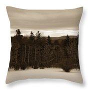 Berkshires Winter 1 - Massachusetts Throw Pillow
