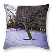 Berkshires Winter 2 - Massachusetts Throw Pillow