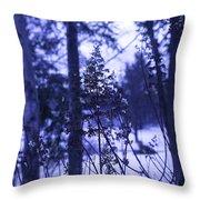 Berkshires Winter 8 - Massachusetts Throw Pillow