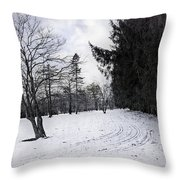 Berkshires Winter 9 - Massachusetts Throw Pillow