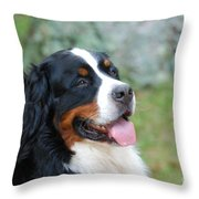 Bernese Mountain Dog Portrait Throw Pillow