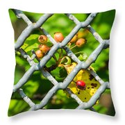 Berries And The City - Featured 3 Throw Pillow