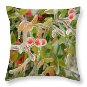 Winter Berries On Ice Throw Pillow
