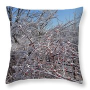 Berries In Ice Throw Pillow