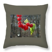 Berries In Winter Throw Pillow