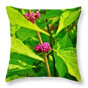 Berries Of Purple Throw Pillow