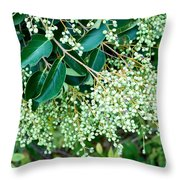 Berries On A Bush Throw Pillow
