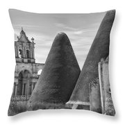 Berrios 1 Throw Pillow