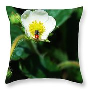 #berry Throw Pillow