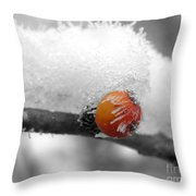Berry-cicle Throw Pillow