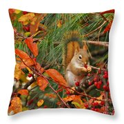 Berry Loving Squirrel Throw Pillow