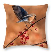 Berry Picking Bluebird Throw Pillow