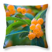 Berrylicious Throw Pillow