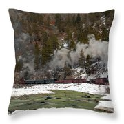 Beside The Animas River Throw Pillow