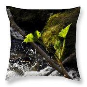 Beside The Waterfall Throw Pillow
