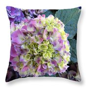 Beter Bloom Late Then Never Throw Pillow