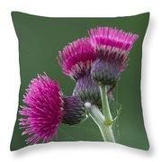 Beth Chatto Garden Throw Pillow