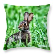 Better Get Started On Those Easter Eggs Throw Pillow
