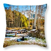 Better Re-think That Picnic Throw Pillow