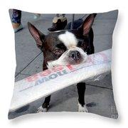 Betty The News Dog Throw Pillow