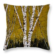 Betulle A Sfondo Giallo Throw Pillow