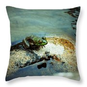 Between A Frog And A Hard Place Throw Pillow