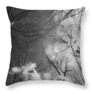 Between Black And White-02 Throw Pillow