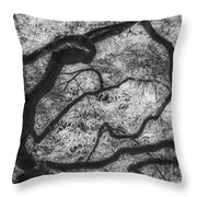 Between Black And White-07 Throw Pillow