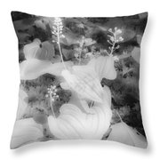 Between Black And White-12 Throw Pillow