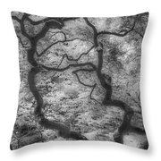 Between Black And White-16 Throw Pillow