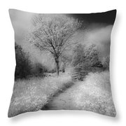 Between Black And White-23 Throw Pillow