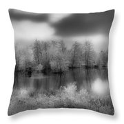 Between Black And White-24 Throw Pillow