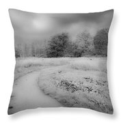 Between Black And White-25 Throw Pillow