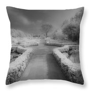 Between Black And White-26 Throw Pillow