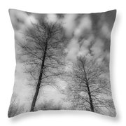 Between Black And White-30 Throw Pillow
