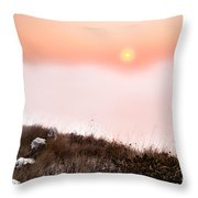 Between Rocks And The Sunrise Throw Pillow