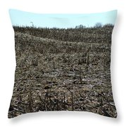 Between Sky And Field Throw Pillow