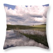 Between Storms Throw Pillow