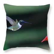 Between The Rafters Throw Pillow