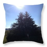 Between These Trees Throw Pillow